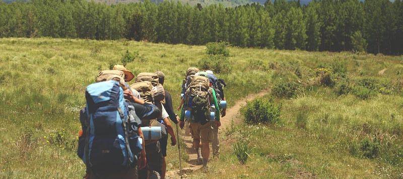 hikers in field