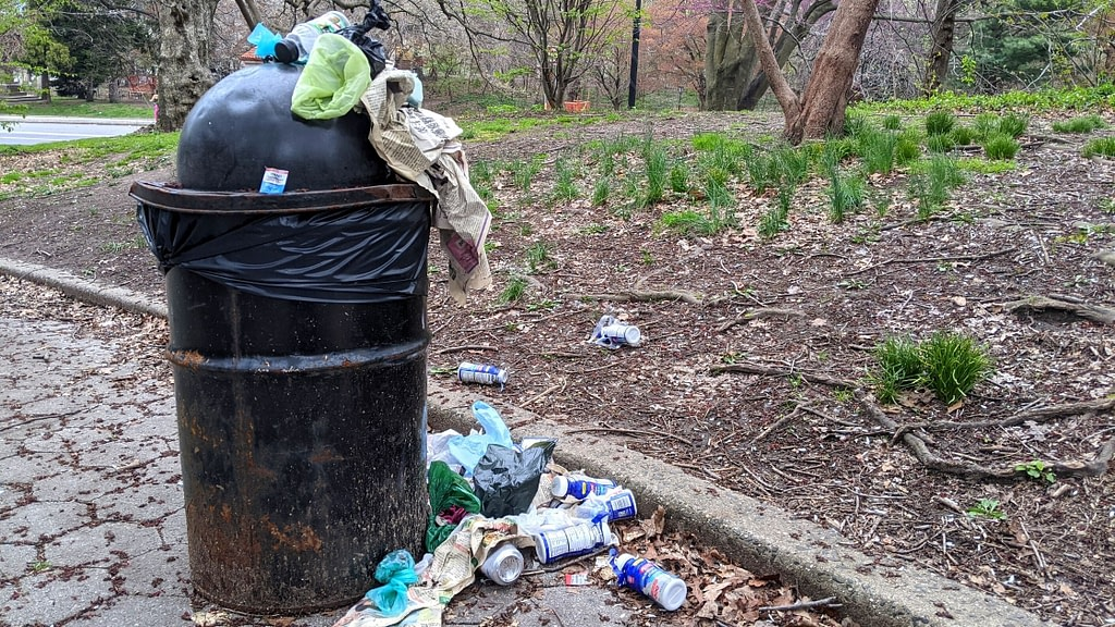 trash in the park
