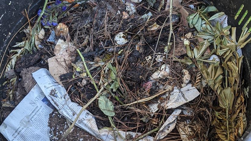 inside of a compost bin