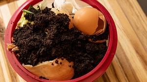 food scraps for composting